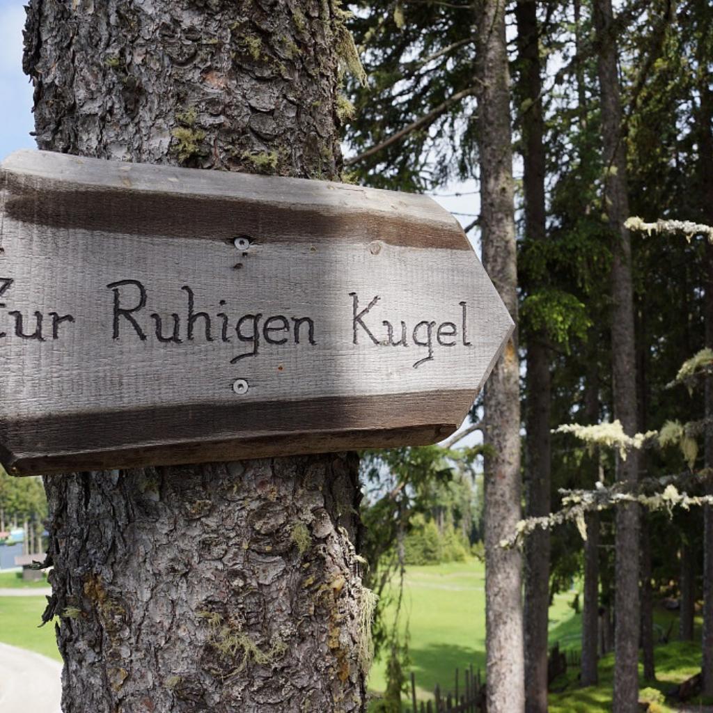 Orientierung finden Gschwendtalm Tirol